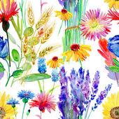 Watercolor flowers illustration. — Stock Photo