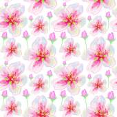Floral background with flowers. — Stock Photo