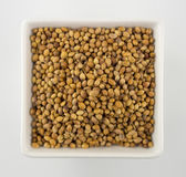 Coriander seeds in a square bowl isolated on white — Stock Photo