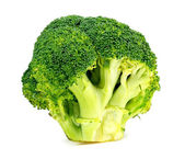 Isolated studio shot of fresh Australian broccoli floret — Stock Photo