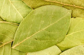 Background texture of bay leaves — Stock Photo