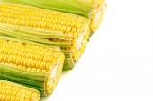 Macro background texture of tasty, juicy corn — Foto de Stock