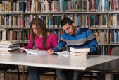 Young Students Working Together In The Library — Stock Photo