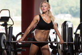Beautiful Fit Healthy Woman In Gym Sports Clothing — Stock Photo