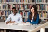 Grup birlikte üniversitede okuyan genç öğrenci — Stok fotoğraf