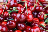 Cherries closeup — Stock Photo
