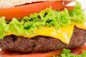 Hamburger layers.  — Stock Photo