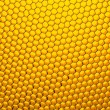 Honeycomb grid — Stock Photo #53299001
