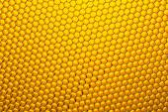 Honeycomb grid  — Stock Photo