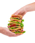 Sandwich in hands — Stock Photo