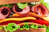 Délicieux sandwich — Photo