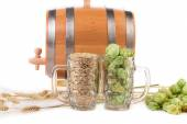 Mugs with barley and hop. — Stock Photo
