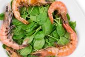 Shrimps with spinach salad — Stock Photo