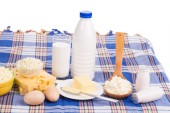 Delicious dairy products. — Stock Photo