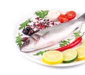 新鲜鲈鱼 — 图库照片