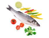 Fresh seabass fish  — Stock Photo
