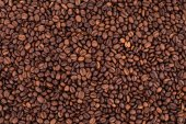 Coffee Beans background close up. — Stock Photo