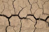 Torra spruckna jorden. — Stockfoto