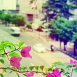 View of the city - the flowers and the road with cars. Selective focus — Zdjęcie stockowe #61468597