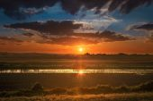Partialy flooded cultivated land at sunset — Stock Photo
