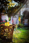 Central Cemetery Zentralfriedhof — Stock Photo