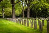 Cemetery Ohlsdorf in Hamburg — Stock fotografie