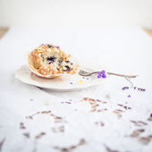 Homemade muffin with blueberries — Stock Photo