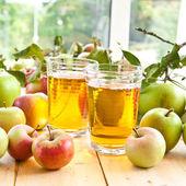 Яблочный сок и свежие яблоки — Стоковое фото