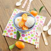 Ice cream with kumquats — Stock Photo
