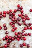 Fresh cherries on ice — Stock Photo