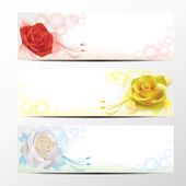 Rose banner collection 1 — Stock Vector