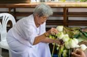 Thai elder woman preparing lotus for people to worship the buddh — Fotografia Stock