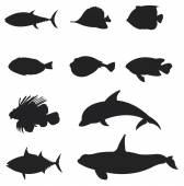 Sets of silhouette slat water Fishes icon set 2, create by vector — Stock Vector