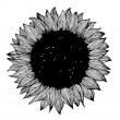 Sunflower black and white — Stock Vector #53038161