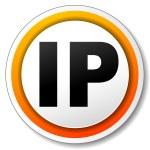Ip address icon — Stock Vector #57642571