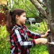 Beautiful preteen girl limewash the apple tree to save in agains — Stock Photo #75201183
