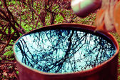 Beautiful branches reflection on the water surface in rusted iro — Stock Photo