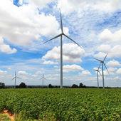 Turbine de vent — Photo