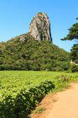 Kalkstenen bergen — Stockfoto