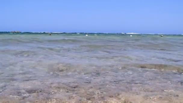 Amazing red sea — Vidéo