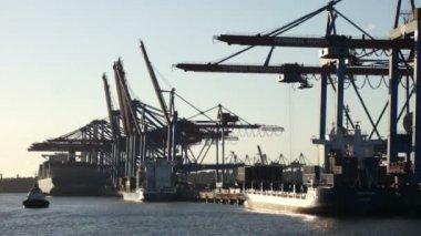 Hamburg harbor at sunset — Stock Video