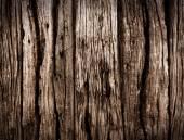 старое дерево фона — Стоковое фото