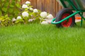 Wheelbarrow cart in a garden — Stock Photo