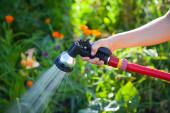 Watering flowers in the garden — Stock Photo