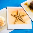 Instant Frame of Starfish and Seashells — Stock Photo #70958107