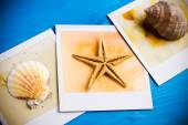 Instant Frame of Starfish and Seashells — ストック写真