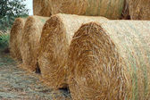Straw bales. — Stock Photo