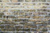 Ancient city wall of pale yellow brick — Stock Photo