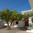 Typical scene of greece house in Tilos island, Greece. Sunny hot day in Tilos island, Greece. Fragment photo of traditional greece house ins small village in Tilos — Zdjęcie stockowe #73999201