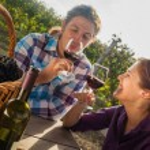Beautiful Couple Drinking Wine — Stock Photo #74094193